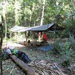 hunting camp - no animals :(