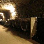 Degustação de vinhos - Amboise
