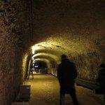 Photo de Les Caves Duhard