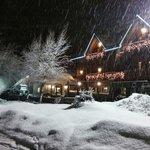 Rini sotto la neve