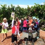 The kids had to hunt for their treasure in the vine maze.