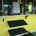 Farm Fresh Avacados - What's Shakin', 27 Old Mamalahoa Hwy 999, Pepeekeo, Island of Hawaii, HI