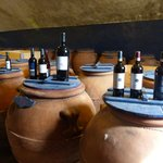 Olive Oil and Wines from Vineyard