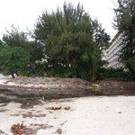 Don't swim here! This sewage runoff empties right on the beach at this hotel. Horrible!  Stay at