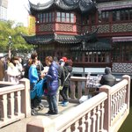 Zigzag bridge and teahouse at Yuyuan Garden