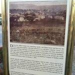 Centennial Park Info