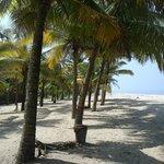 marari beach tuk tuk service 9847516793