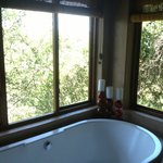 Room includes bathtub and indoor and outdoor shower