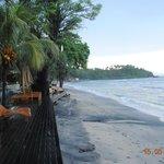 chaises longues sur la plage