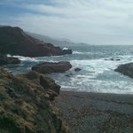 Point Lobos Reserve