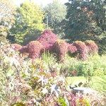 Herbst im Botanischen Garten Augsburg
