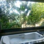 salle de bain vue jardin et mer