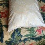Pillow eerrh