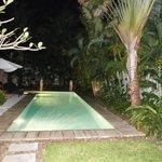 Garten und Pool, abends beleuchtet