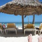 Beach shade and chairs