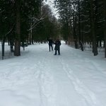 One of the peaceful and glorious snowshoe trails...