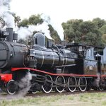 Steam Train Driver Experience locomotive - T-Class