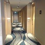 15th floor hallway.