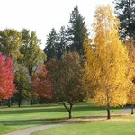 Beautiful Fall Colors on the Leavenworth Golf Course.