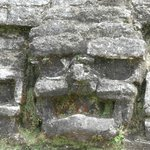 A face in the ruins