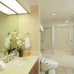 Bathroom with Washlet/Bidet