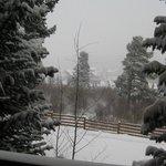 View of 4 o'clock run from condo's back porch