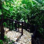 The steps to the Bushbar.