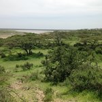 Lake Ndutu from Halisi camp