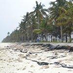 Пляж неподалеку от отеля