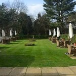Lovely lawn area outside lounge