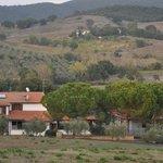 Agriturismo vom benachbarten Olivenhain aus gesehen
