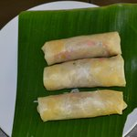 Home made spring rolls