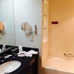 Decent bath and shower, no amenities, no blow dryer