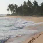 Beach by Eka