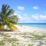 beaches of Vieques