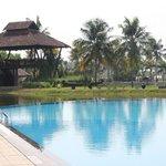 Pool & Yoga Deck
