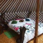 Drift Wood Yurt
