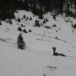 Snowshoeing Taos, NM