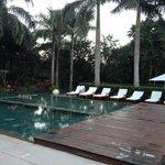 Zen pools