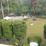 The Garden from the room balcony