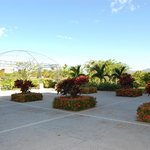 Patio near room