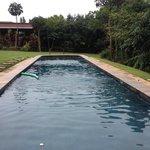 piscine en couloir de natation