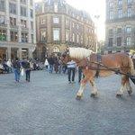 dam meydanında at arabasıyla gezinti yapabilrsiniz