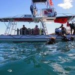Dykning og snorkling