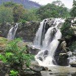 nice water falls