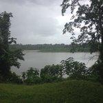 De Suriname rivier vanaf Jodensavanne