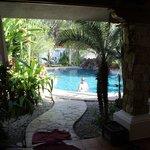 Kamar house patio and pool