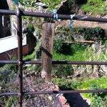 Trail 531 Riomaggiore to Manarola