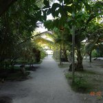 The walk path from main building to the beach and peer