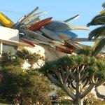 musée coté océan